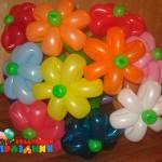 Ц3(2)-620рублей (11цветов)